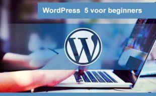 interplein-WordPress-5-voor-beginners1