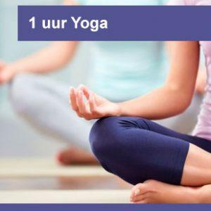 interplein-cursussen-1-uur-Yoga
