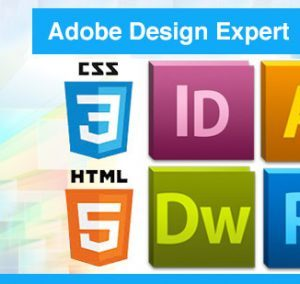 interplein-adobe-design-expertv2-460x284