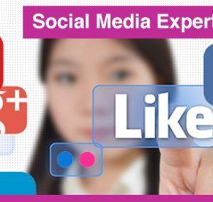 interplein-cursussen-social-media-expert-460x284