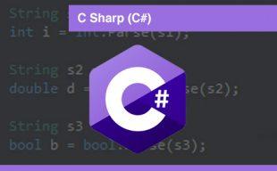 interplein-cursussen-csharp