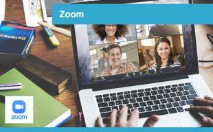 interplein-cursussen-zoom