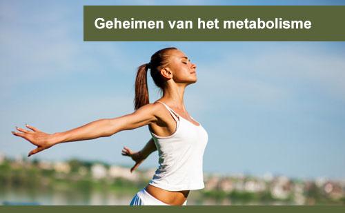 interplein-Geheimen-van-het-metabolisme