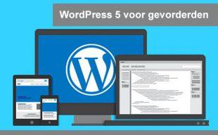 interplein-WordPress-5-voor-gevorderden